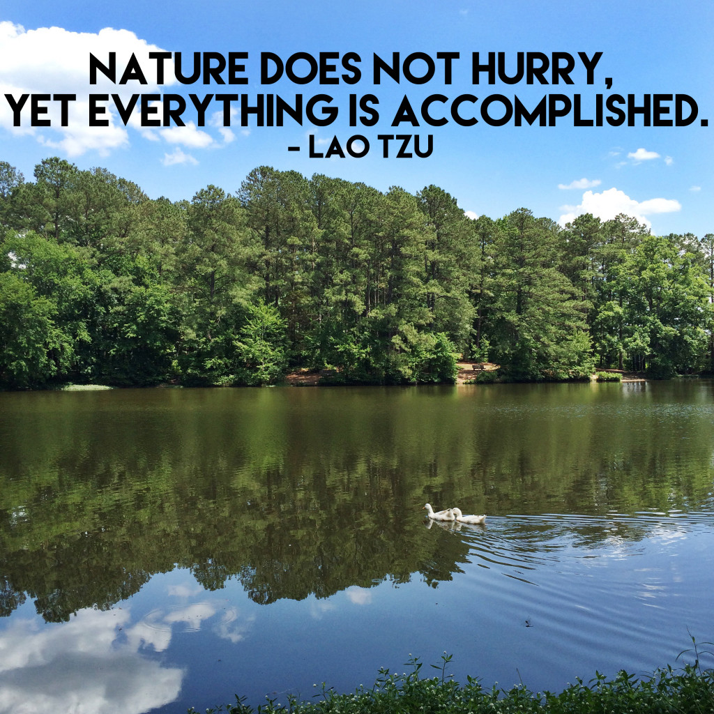 Tuesday Thoughts Nature Does Not Hurry A Small Life
