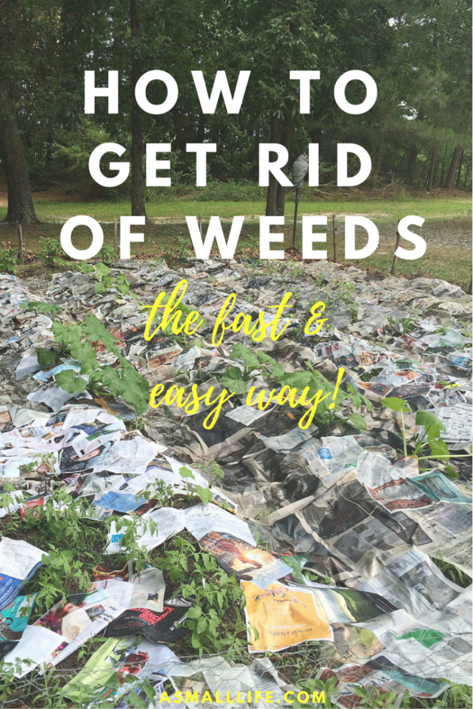 How to get rid of weeds the fast and easy way a small life for How to get rid of weeds in garden